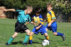2015年度 日刊スポーツ杯 第22回関西小学生サッカー大会 兵庫県大会 優勝は西宮SS!