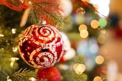 全国各地今週末の主要な大会・イベント情報【12月19日(土)、12月20日(日)】