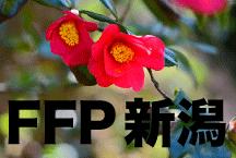 2016年度 JFAフットボールフューチャープログラム(FFP)新潟県代表選手決定!