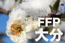 2016年度 JFAフットボールフューチャープログラム(FFP)熊本県代表選手決定!