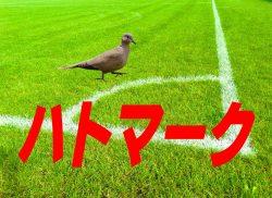 久保建英選手、ついにJ1の舞台へ!デビュー予定は5月3日(水祝)!【4月23日プレミアリーグ動画あり】