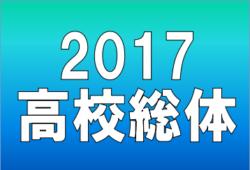 2017年度 大阪高校春季サッカー大会(全国高等学校総合体育大会サッカー競技 大阪府予選)優勝は東海大仰星!