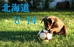 2018年度 ジュニアユース募集情報【静岡U-13】