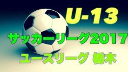 【東京】第96回高校サッカー選手権出場校の出身中学・チーム一覧【サッカー進路】