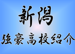 【強豪高校紹介】新潟県 県立新潟南高校(2018年度インハイ県予選ベスト8)