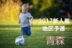 2017年度 第23回全日本ユース(U-15)フットサル大会 関西大会 ドリームFC、京都JマルカFCが代表に決定!