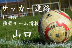 【U-15強豪チーム紹介】山口県 FC亀山