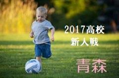 2017年度 県民共済カップ第15回新潟県サッカー大会 新潟県大会 優勝はアルビレックス新潟U-12!