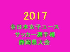 2017年 第21回全日本女子ユースサッカー選手権大会 静岡県大会 優勝は浜松泉フットボールクラブ