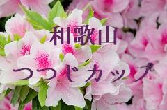和歌山つつじカップ【2018 Autumn U-10】 優勝はFCグラシオンA !
