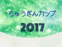富山県ユース(U-13)サッカーリーグ2017 1部リーグ優勝はカターレ富山!2部リーグ優勝はエヌスタイル2nd!