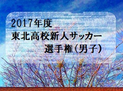 2017年度 第17回東北高等学校新人サッカー選手権大会(男子)優勝は青森山田高校!