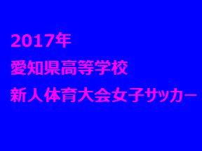 2017年 愛知県高等学校新人体育大会女子サッカー競技 優勝は聖カピタニオ高校!