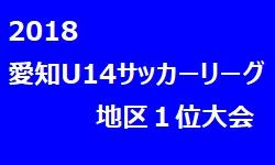 2018年 愛知県3種 U-14サッカーリーグ 地区1位大会 優勝は音羽中学校