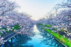 関東地区の今週末の大会・イベント情報 【3月17日(土)、3月18日(日)】