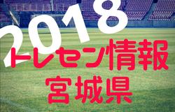 【最終日結果速報】2017年度 第23回船橋招待U-18サッカー大会   優勝は東京ヴェルディユース!