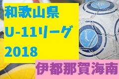 2018年度 第39回 杉並区長杯少年サッカー大会【東京都】 優勝は杉並アヤックスSC!
