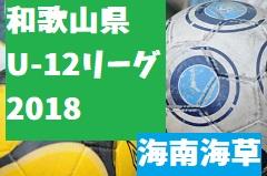 2018年度 JFA U-12サッカーリーグ2018和歌山(ホップリーグ)海南海草ブロック 総合優勝はFCバレンティア!全日県大会出場6チーム決定!