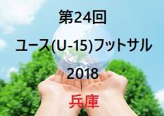 2018年度 第23回全日本U-15女子サッカー選手権 新潟県大会 優勝はアルビレックス新潟!