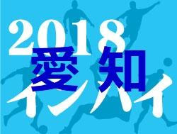 2018年度 第72回愛知県高等学校総合体育大会サッカー競技 尾張支部 優勝は尾北