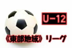 2018年度 第43回 岡山県 東部少年サッカーリーグ(高学年) 10/6結果掲載!情報お待ちしてます!
