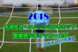 2018年第71回広島県高校総体サッカー女子の部 優勝は広島文教高校!