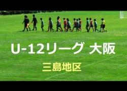 2018年度 U-12リーグ(全日リーグ) 第42回全日本少年サッカー大会 三島地区 (大阪府) 中央大会出場5チーム決定!