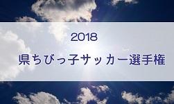 2018年度学校総体兼全国高校総体埼玉県予選(インハイ予選)優勝は昌平高校!