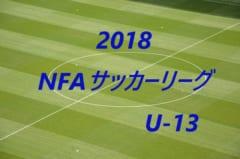 2018年度 NFAサッカーリーグ U-13(奈良県)プレミア優勝はYF奈良テソロ!最終順位掲載!