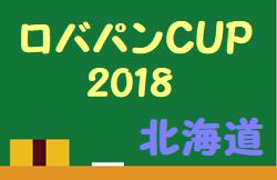 2018年度 ライフカップ 第42回大阪府小学生サッカー選手権大会 北河内地区予選 中央大会出場5チーム決定!