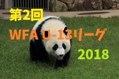 第2回 和歌山県 WFA U-13サッカーリーグ 2018 優勝はミラグロッソ海南SC!次節1/26最終節!