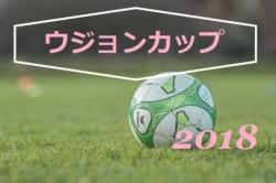 【午後から中止】ラモスカップ公認 第19回 ウジョンカップ 2018(U-12)順位決定戦8/23結果情報お待ちしています!