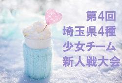 2018年度 第30回埼玉県少女サッカー大会 11/17結果速報!情報お待ちしています!