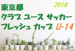 2018年度 東京都クラブユースサッカーフレッシュカップU-14  上位下位リーグ開幕!情報お待ちしています!
