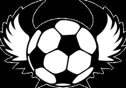 2018年度 JA東京カップ 第30回東京都5年生サッカー大会 14ブロック予選 優勝はJACPA東京FC!