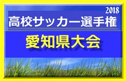 2018年度  第97回全国高校サッカー選手権大会 愛知県大会結果掲載!東邦がPK戦を制し全国大会へ!