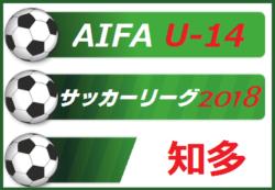 2018年度 愛知県  AIFA U-14 サッカーリーグ 知多【決勝トーナメント組合せ掲載】12/15,1/26開催!