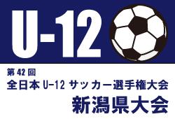 2018年度 JFA第42回全日本少年サッカー選手権大会新潟県大会 優勝は club F3!