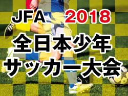 2018年度 JFA第42回 全日本少年サッカー大会 島根県大会  優勝はフットボールクラブ斐川!