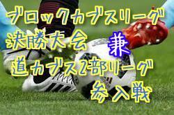 2018北海道ブロックカブスリーグ決勝大会 兼 道カブス2部リーグ参入戦 10/20,21結果速報!次回10/27,28