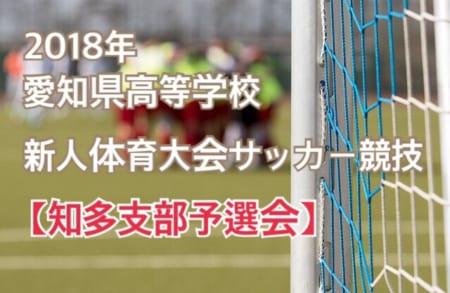 2018年度 愛知県高等学校新人体育大会 サッカー競技 知多支部予選会 情報をお待ちしています!