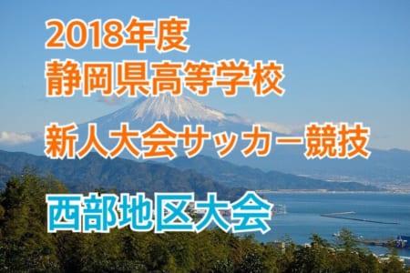 2018年度 静岡県 高校新人大会サッカー競技 西部地区大会【決勝T 1/19,20結果速報!】情報をお待ちしております!