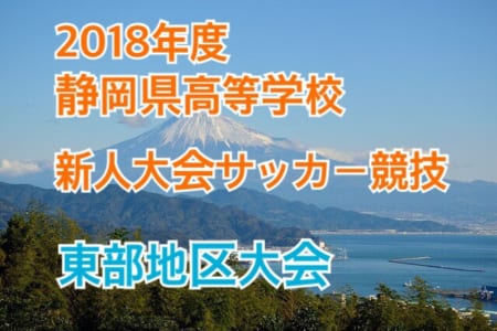 2018年度 静岡県 高校新人大会サッカー競技 東部地区大会【1/12,13結果掲載、ベスト8が出揃う!】次回準々決勝は1/19開催!