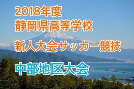 2018年度 静岡県 高校新人大会サッカー競技 中部地区大会【2次ラウンド2回戦1/19,20結果速報!】情報をお待ちしております!