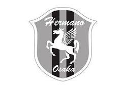 2019年度  SC大阪エルマーノサッカークラブU-15(現小6年生)募集(大阪府)開催