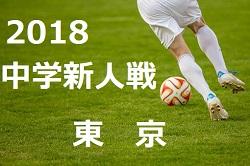 2018年度 第62回 東京都中学校サッカー新人戦大会 第5支部予選 11/10最終結果掲載!代表4校決定しました!