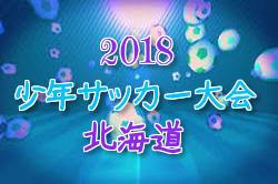 2018札幌市サッカー少年団8人制(U-10)全市大会 優勝は札幌ジュニア!【北海道】