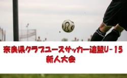 2018年度 第25回奈良県クラブユースサッカー連盟U-15新人大会 準決勝結果!決勝は12/16!