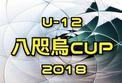 2018年度 八咫烏CUP 2018 U-12 Football Festival 12/8.9開催!出場チーム続々決定!