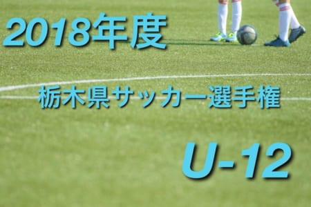 2018年度 第47回栃木県少年サッカー選手権大会 選手権の部(U-12) 組合せ決定!10/27~開催!